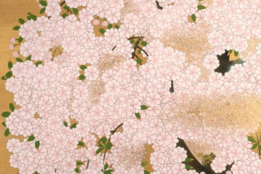 Special Exhibition : Sakura, Sakura, Sakura 2020  <br/>— Flower Viewing at the Museum!